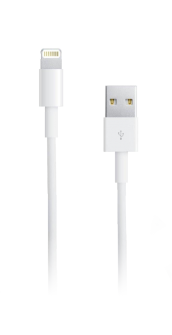 Apple Travel Charger